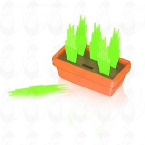 Partypicks set Grass