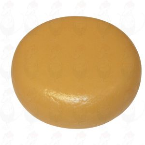 Cheese Dummy Gouda (model) - black - 12kg