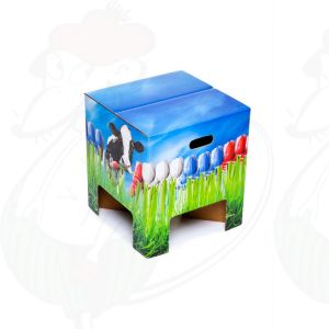 Dutch Design Chair Tulips