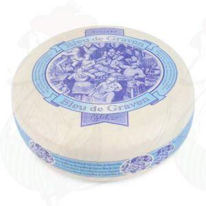 Blue de Graven – Hollandsk Blåskimmelost – Vegetarisk Ost |Hel ost 3,5 kilo
