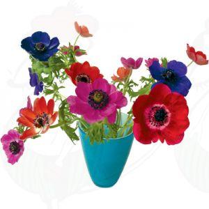 Anemone Blue Window Decal - Flat Flower - 30 x 37 cm