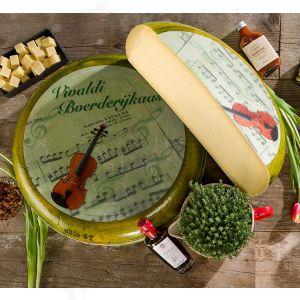 Vivaldi cheese