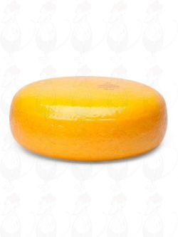 Gouda Cheese | Entire cheese 4,5 kilo / 9.9 lbs